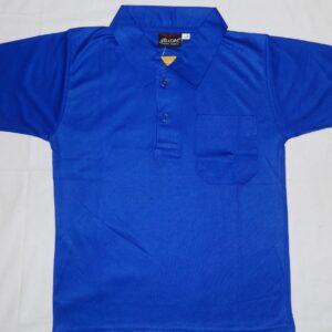 DPS BLUE T-SHIRT