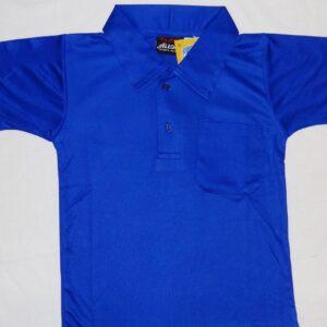 DPS DAULATPUR BLUE T-SHIRT