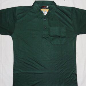 DPS DAULATPUR GREEN T-SHIRT