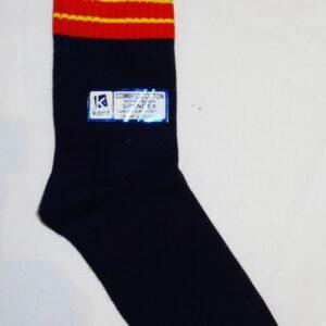 SAI SANSKAR BLUE SOCKS